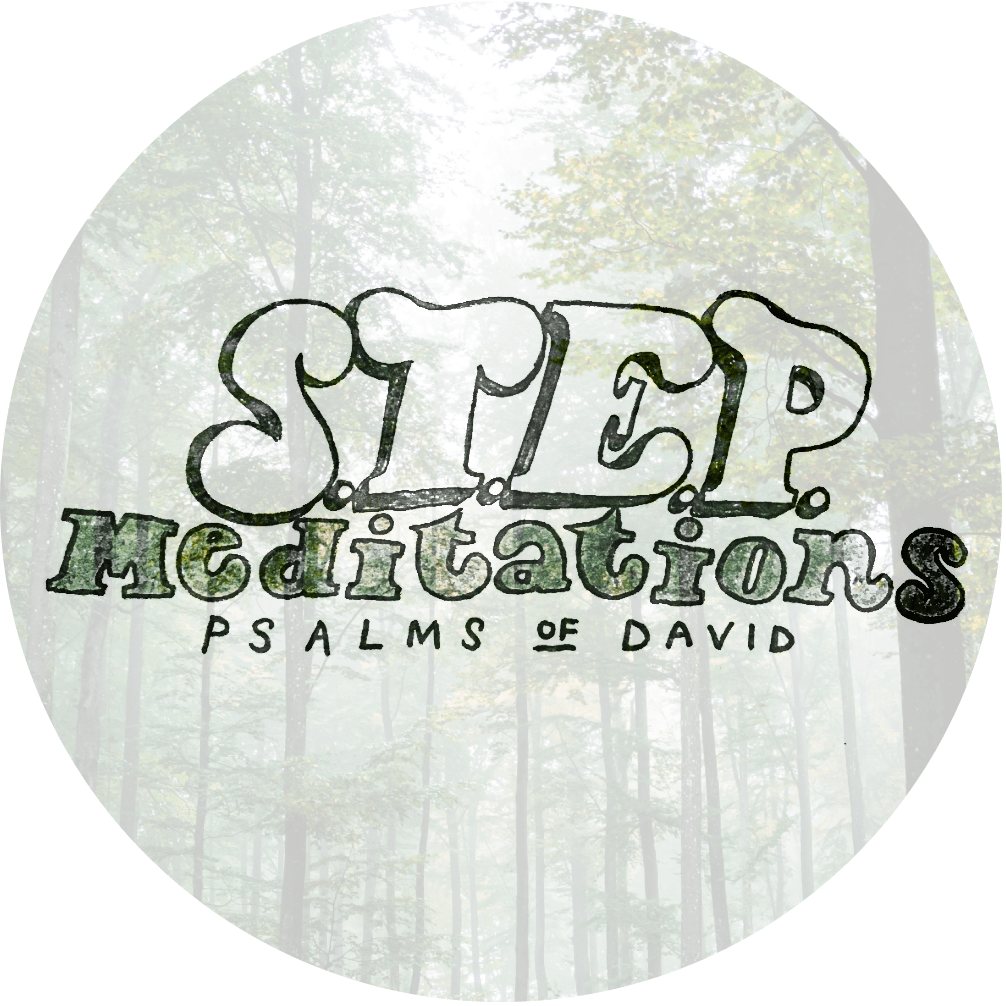 Stepping into the heart of the Psalms of David: A man after God's own heart.